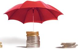 Государственная система обязательного страхования вкладов физических лиц