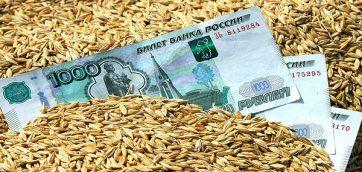 Ткачев: США лихорадит на фоне большого урожая в России